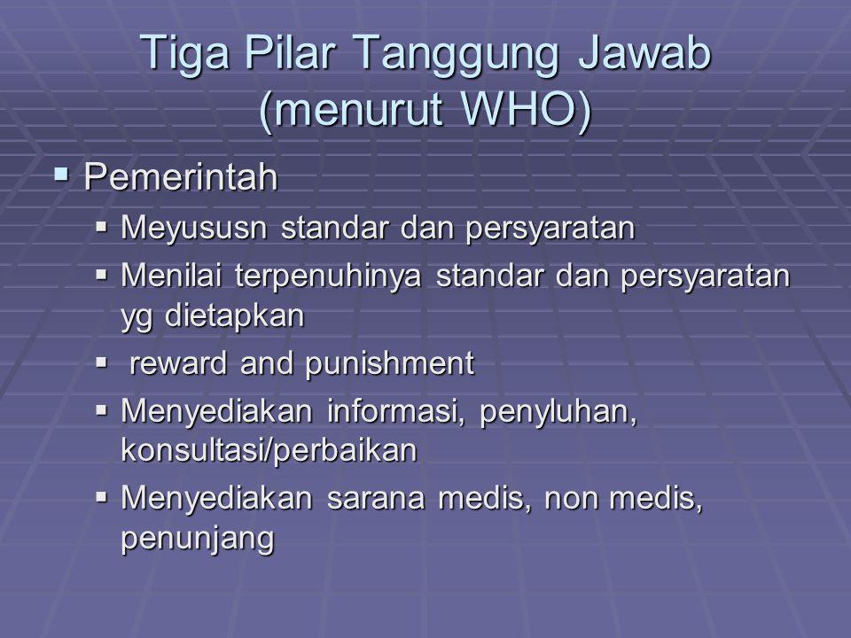 Tiga Pilar Tanggung Jawab (menurut WHO)