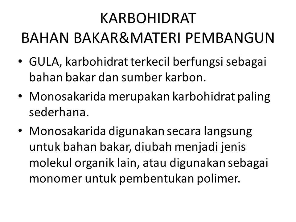 KARBOHIDRAT BAHAN BAKAR&MATERI PEMBANGUN