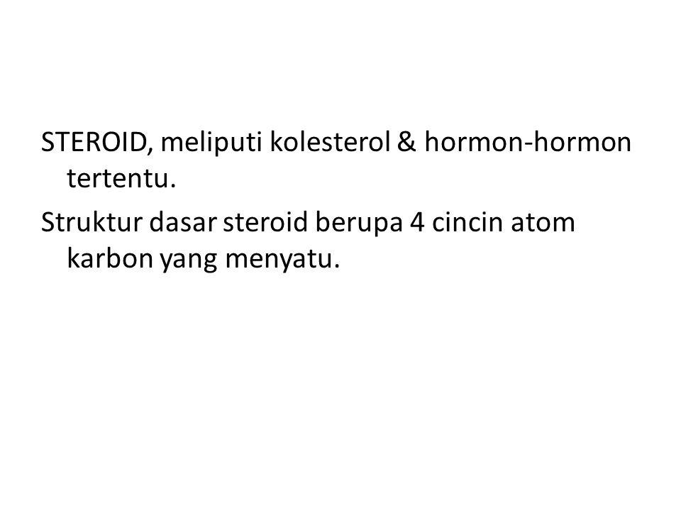 STEROID, meliputi kolesterol & hormon-hormon tertentu