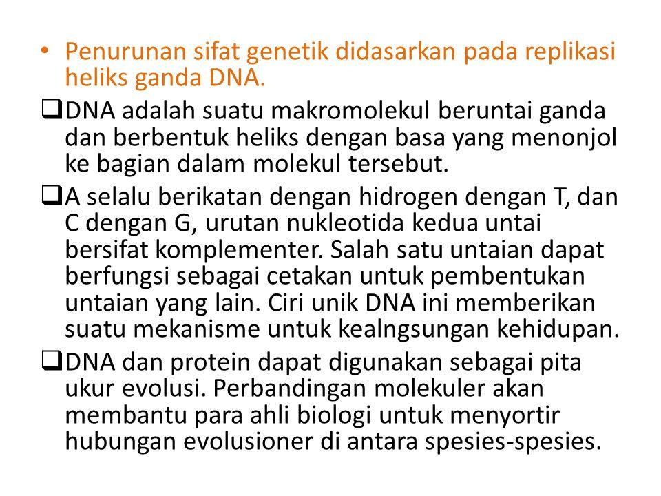 Penurunan sifat genetik didasarkan pada replikasi heliks ganda DNA.