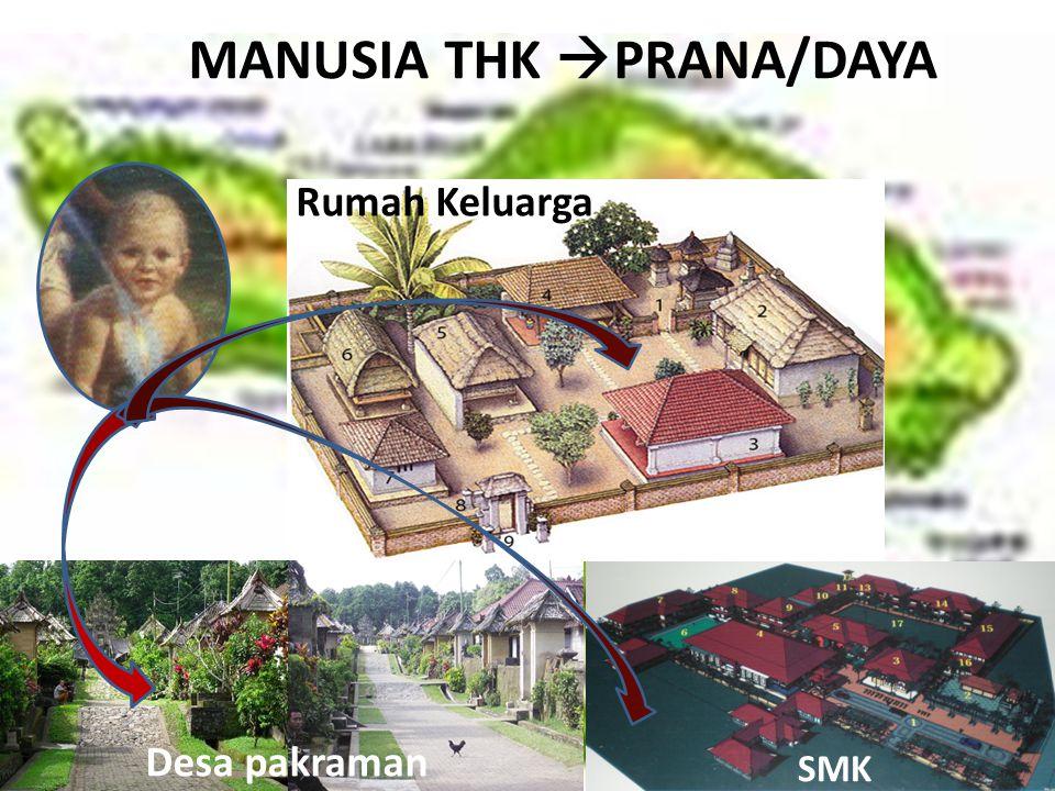 MANUSIA THK PRANA/DAYA