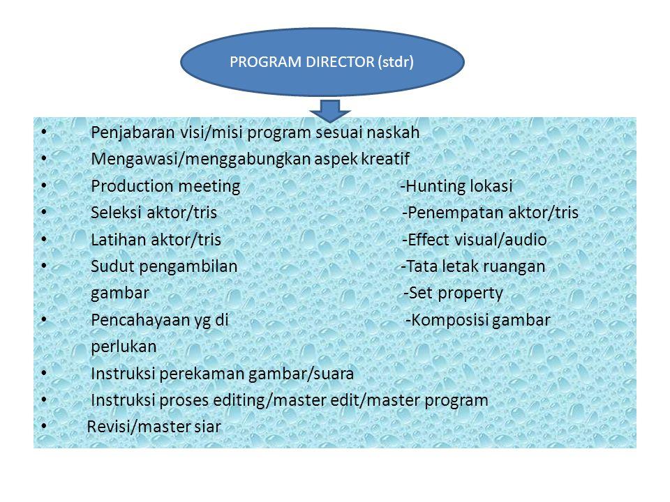PROGRAM DIRECTOR (stdr)