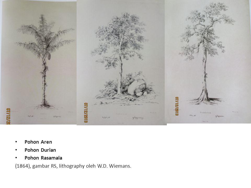 Pohon Aren Pohon Durian Pohon Rasamala (1864), gambar RS, lithography oleh W.D. Wiemans.