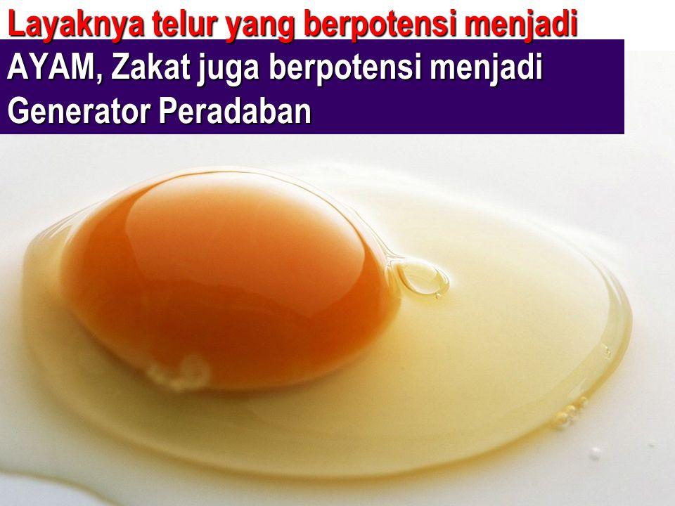 Layaknya telur yang berpotensi menjadi AYAM, Zakat juga berpotensi menjadi Generator Peradaban