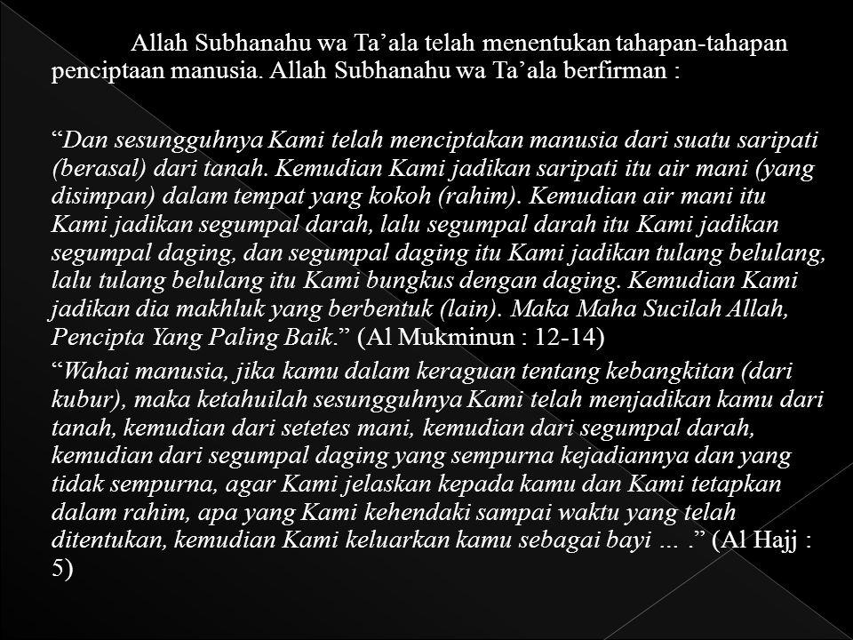 Allah Subhanahu wa Ta'ala telah menentukan tahapan-tahapan penciptaan manusia. Allah Subhanahu wa Ta'ala berfirman :
