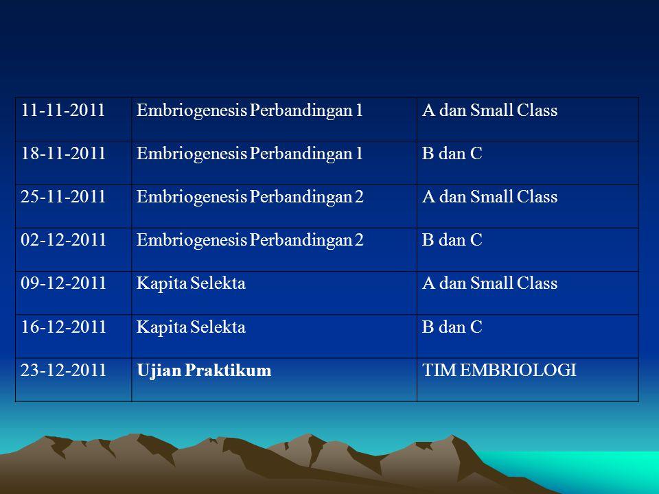 11-11-2011 Embriogenesis Perbandingan 1. A dan Small Class. 18-11-2011. B dan C. 25-11-2011. Embriogenesis Perbandingan 2.