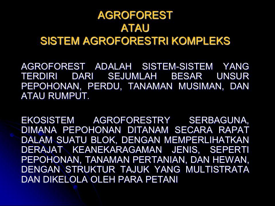 AGROFOREST ATAU SISTEM AGROFORESTRI KOMPLEKS
