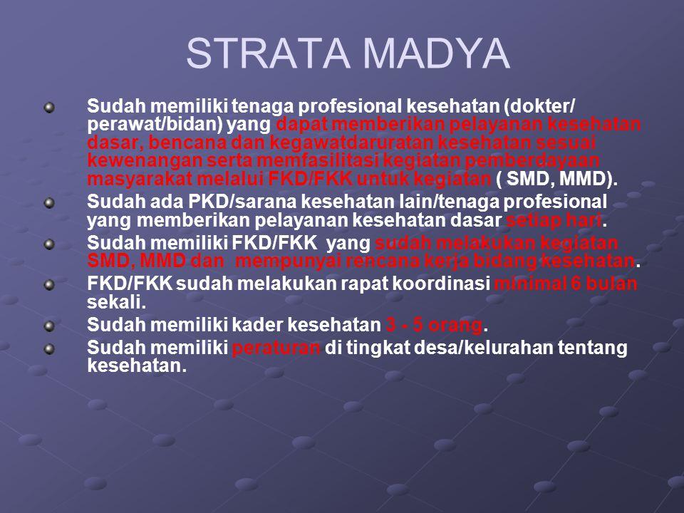 STRATA MADYA