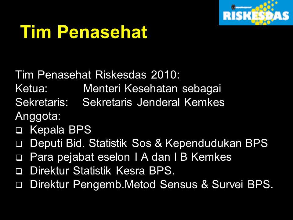 Tim Penasehat Tim Penasehat Riskesdas 2010: