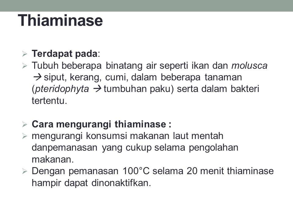 Thiaminase Terdapat pada: