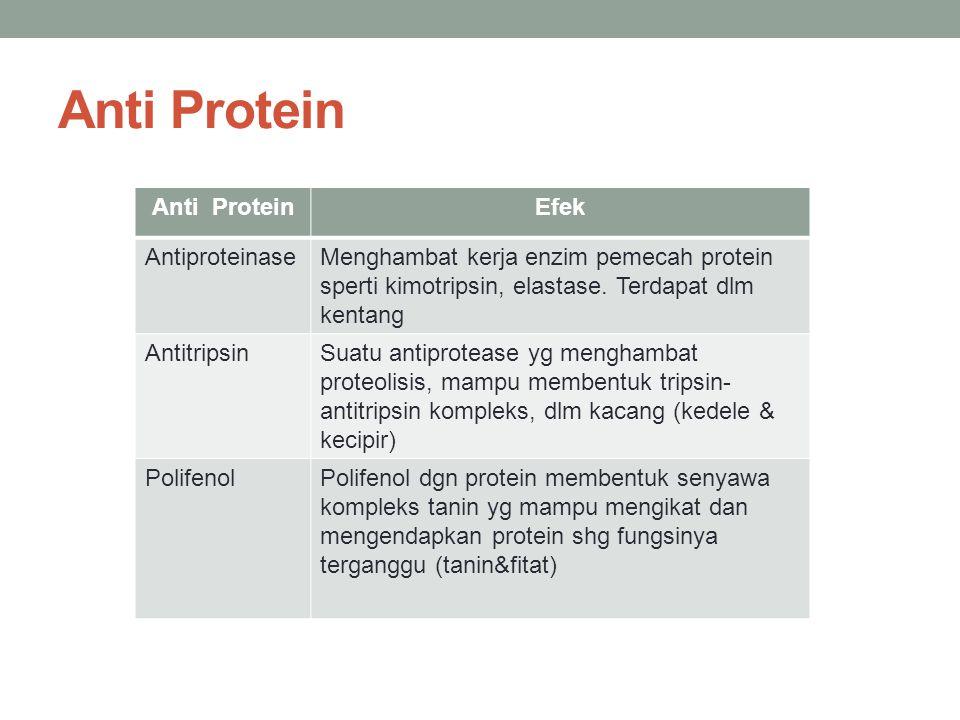 Anti Protein Anti Protein Efek Antiproteinase