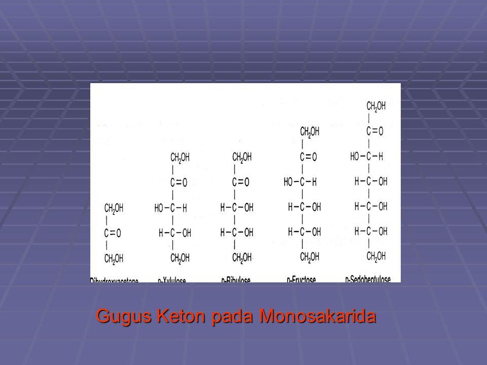 Gugus Keton pada Monosakarida