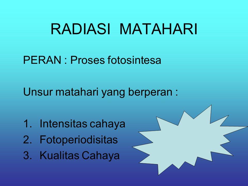RADIASI MATAHARI PERAN : Proses fotosintesa