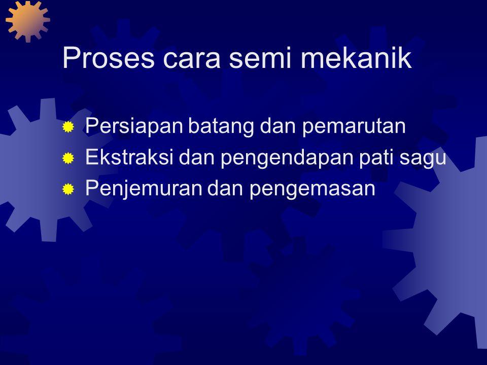Proses cara semi mekanik