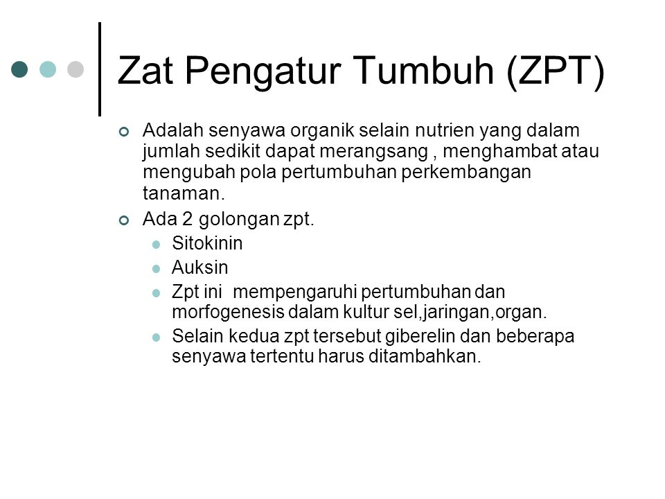 Zat Pengatur Tumbuh (ZPT)