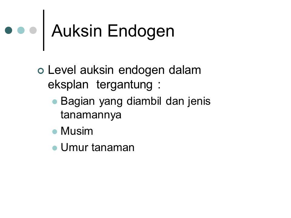Auksin Endogen Level auksin endogen dalam eksplan tergantung :