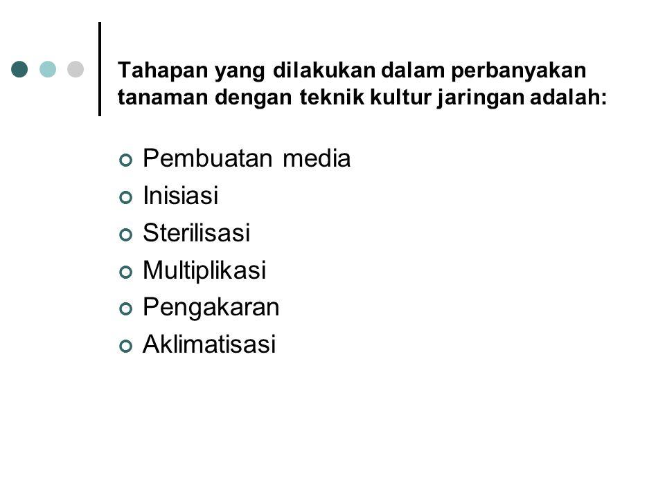 Pembuatan media Inisiasi Sterilisasi Multiplikasi Pengakaran