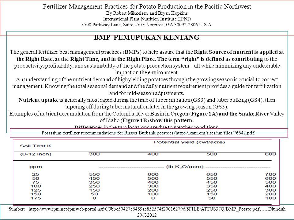 Fertilizer Management Practices for Potato Production in the Pacific Northwest