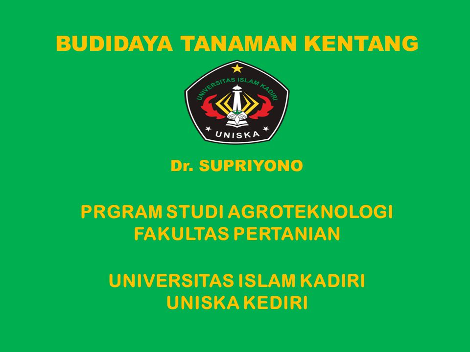 BUDIDAYA TANAMAN KENTANG Dr