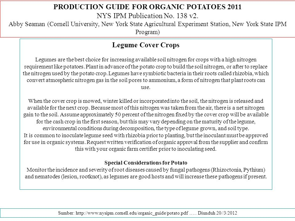 PRODUCTION GUIDE FOR ORGANIC POTATOES 2011 Legume Cover Crops