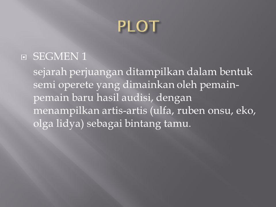 PLOT SEGMEN 1.