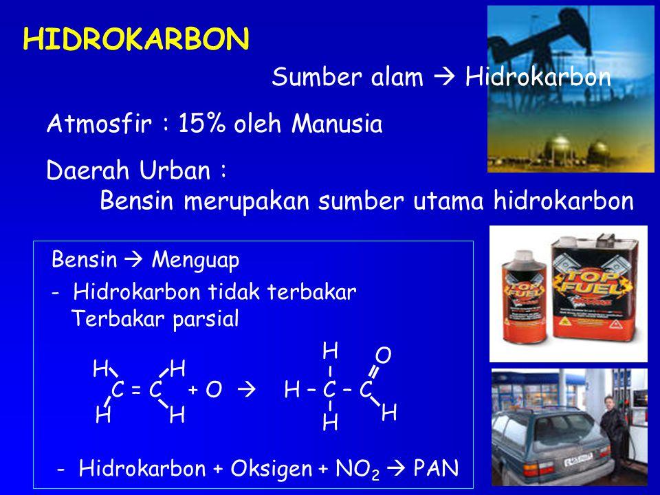 HIDROKARBON Sumber alam  Hidrokarbon Atmosfir : 15% oleh Manusia