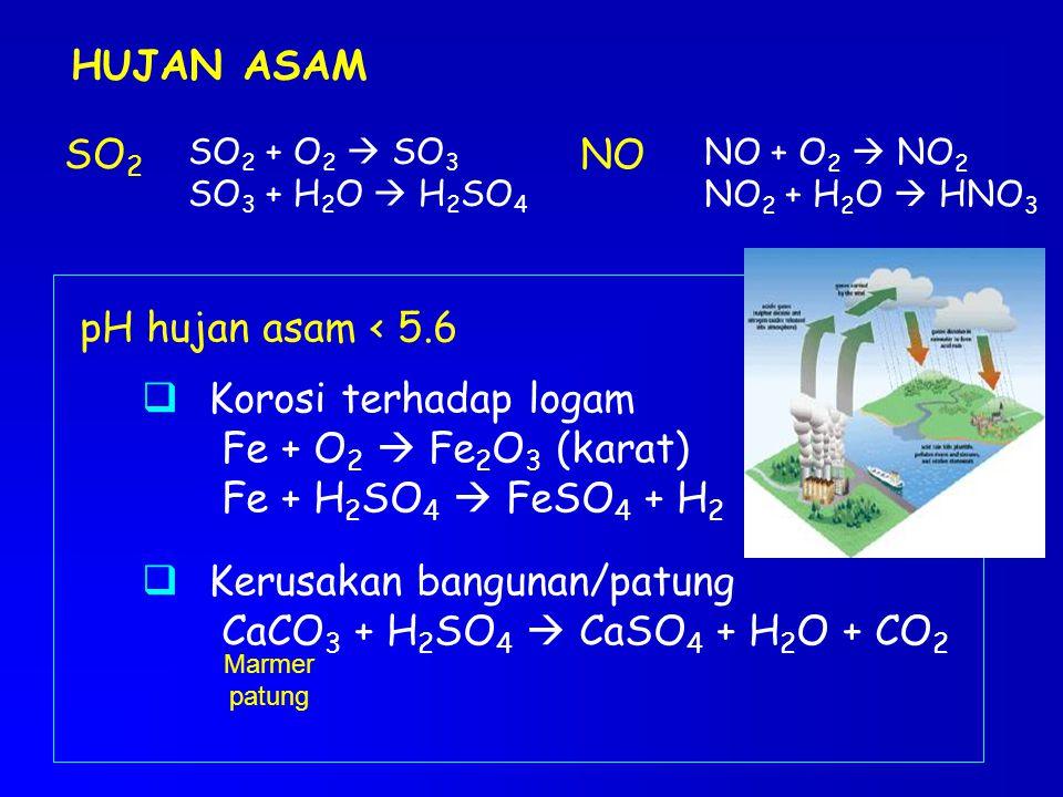 Kerusakan bangunan/patung CaCO3 + H2SO4  CaSO4 + H2O + CO2