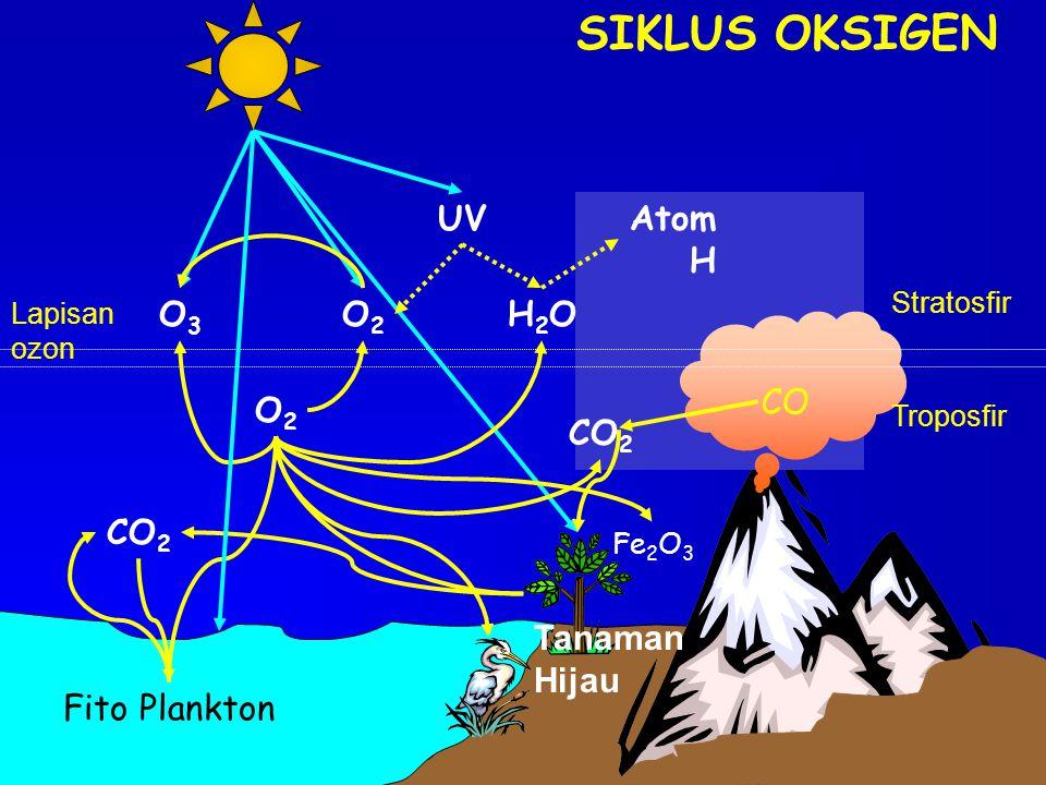 SIKLUS OKSIGEN UV CO Atom H O3 O2 H2O O2 CO2 CO2 Tanaman Hijau