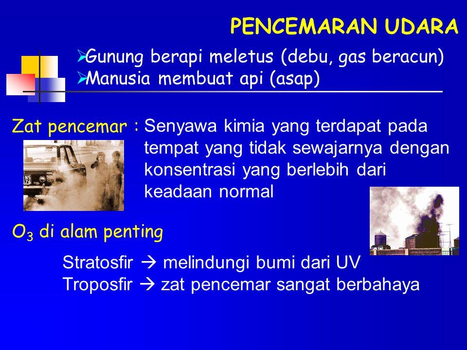 PENCEMARAN UDARA Gunung berapi meletus (debu, gas beracun)