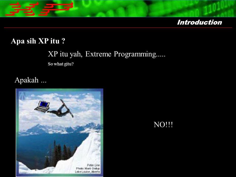 XP itu yah, Extreme Programming.....