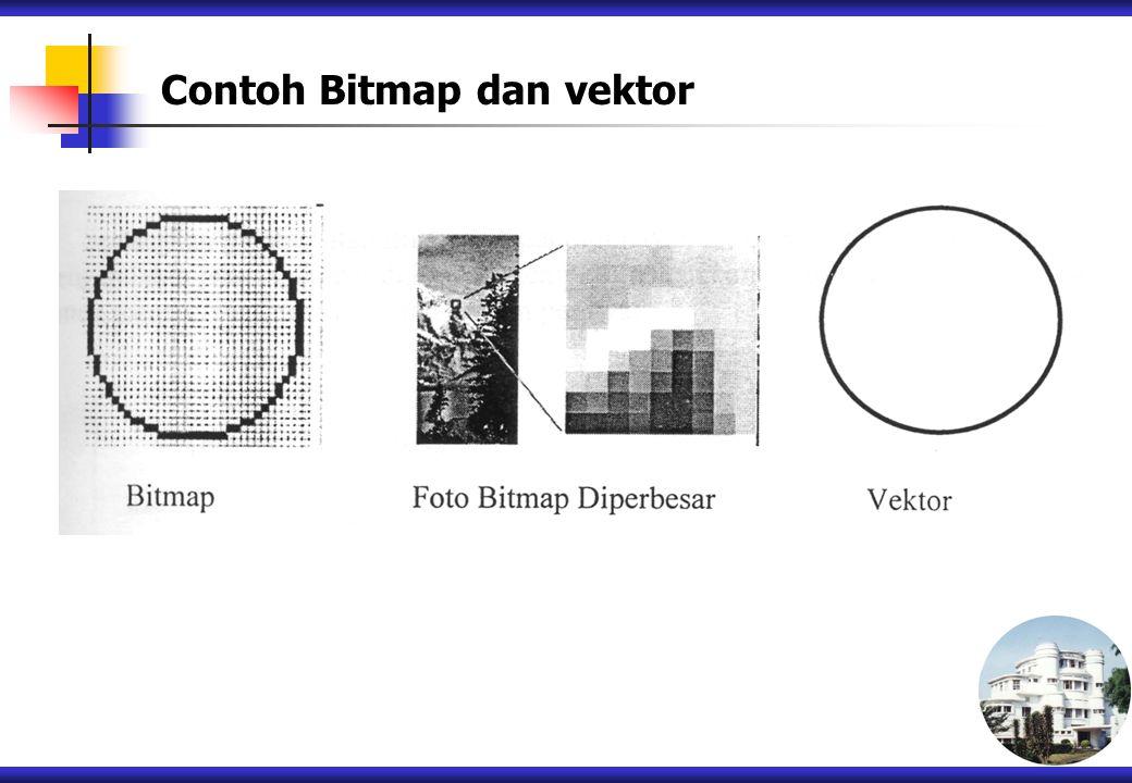Contoh Bitmap dan vektor