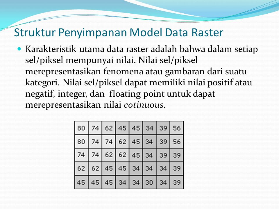 Struktur Penyimpanan Model Data Raster