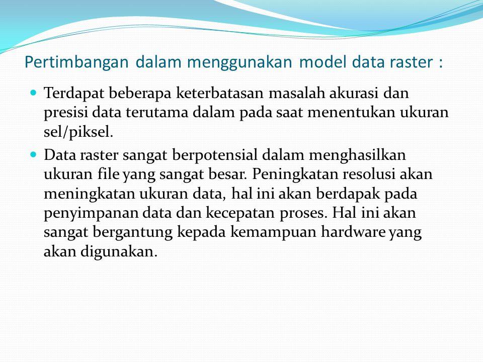 Pertimbangan dalam menggunakan model data raster :