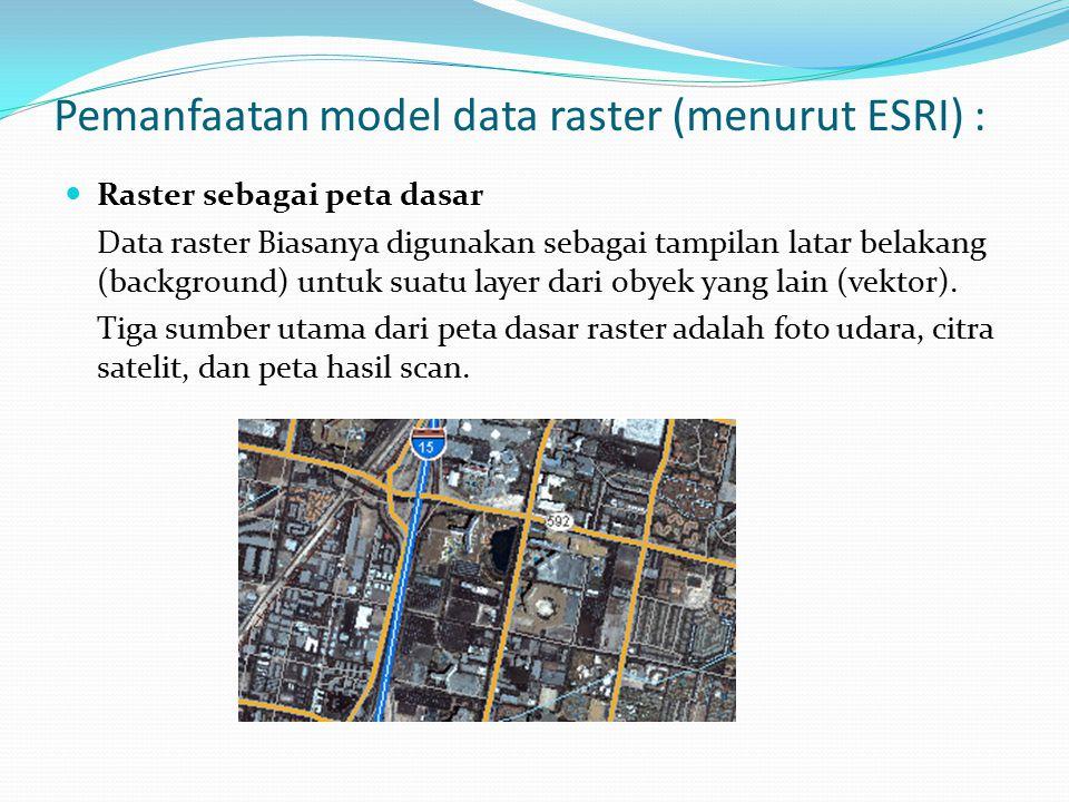 Pemanfaatan model data raster (menurut ESRI) :