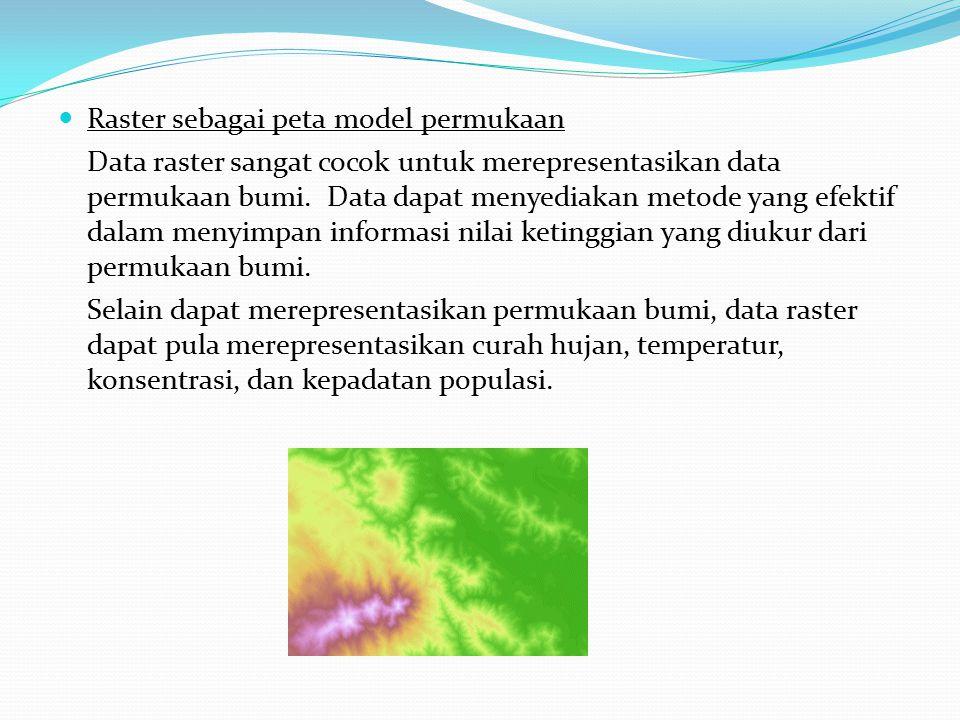 Raster sebagai peta model permukaan