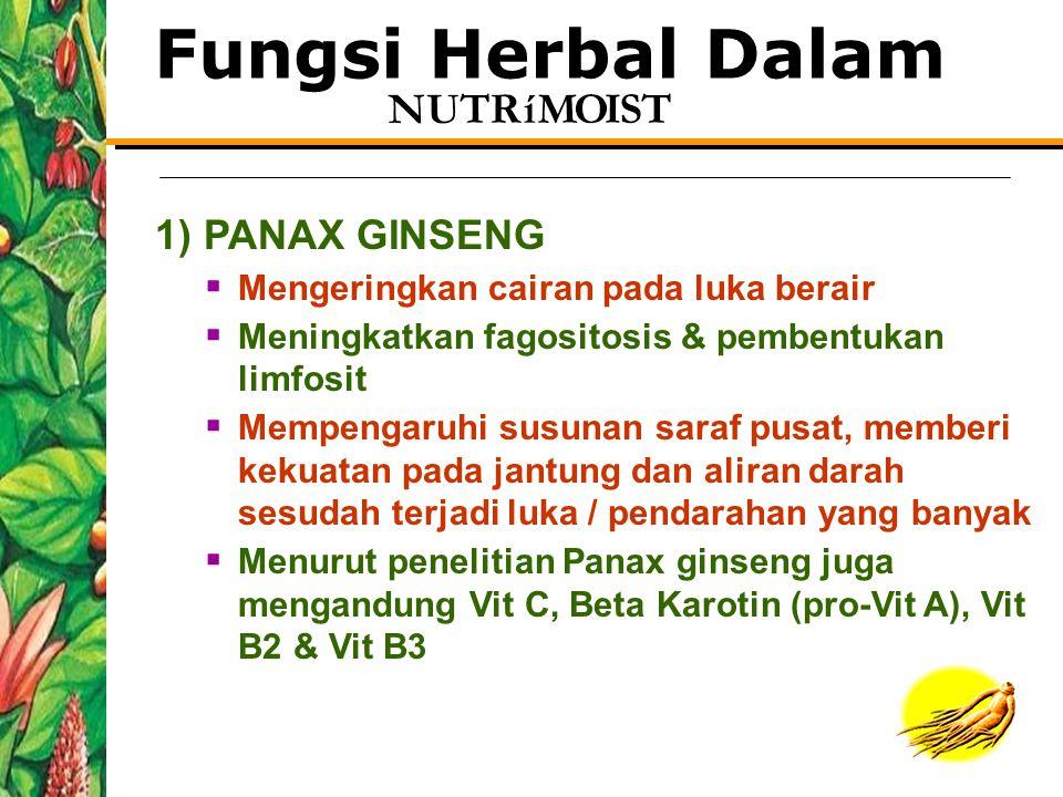 Fungsi Herbal Dalam 1) PANAX GINSENG