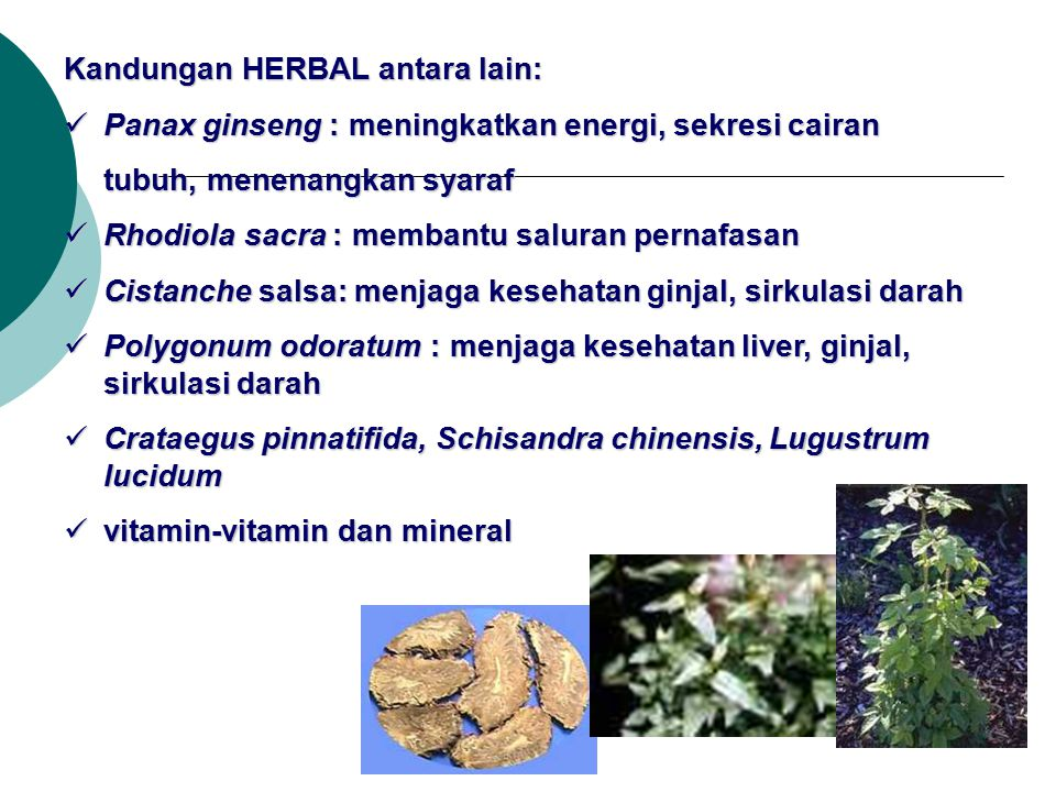Kandungan HERBAL antara lain:
