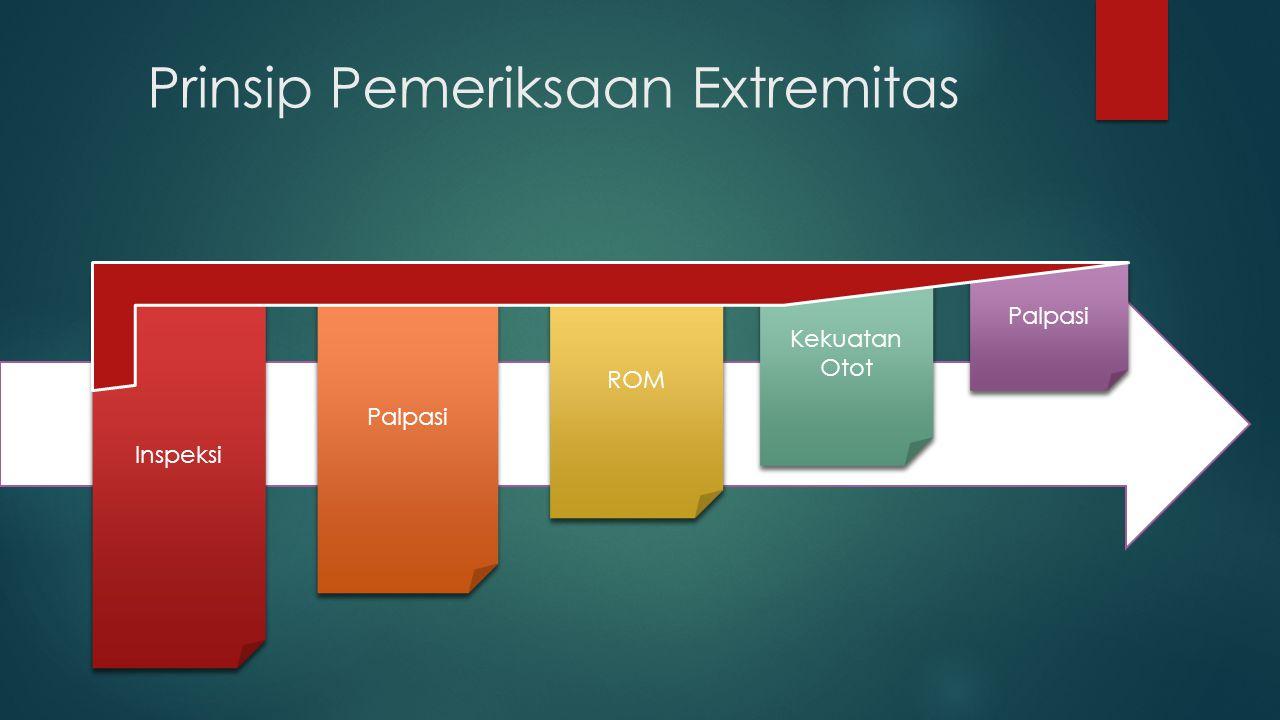 Prinsip Pemeriksaan Extremitas