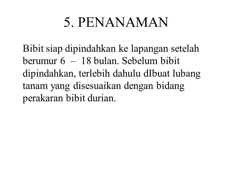 5. PENANAMAN
