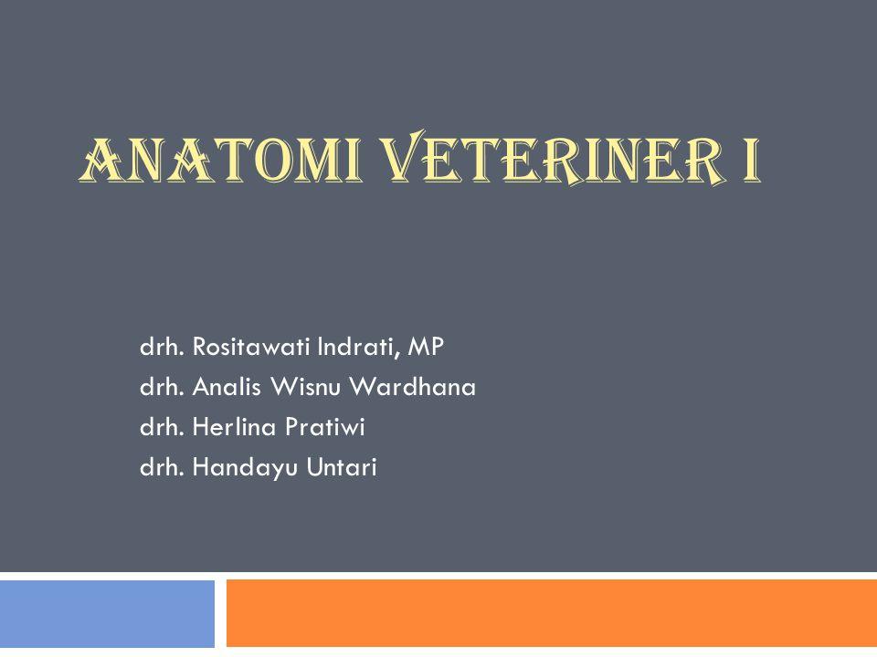 ANATOMI VETERINER I drh. Rositawati Indrati, MP