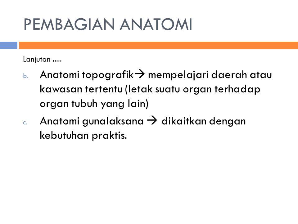 PEMBAGIAN ANATOMI Lanjutan ..... Anatomi topografik mempelajari daerah atau kawasan tertentu (letak suatu organ terhadap organ tubuh yang lain)