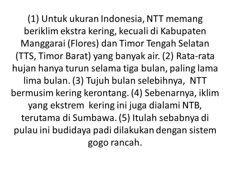 (1) Untuk ukuran Indonesia, NTT memang beriklim ekstra kering, kecuali di Kabupaten Manggarai (Flores) dan Timor Tengah Selatan (TTS, Timor Barat) yang banyak air.