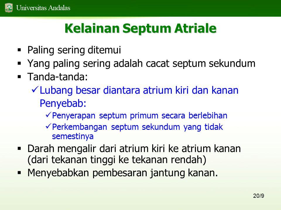 Kelainan Septum Atriale