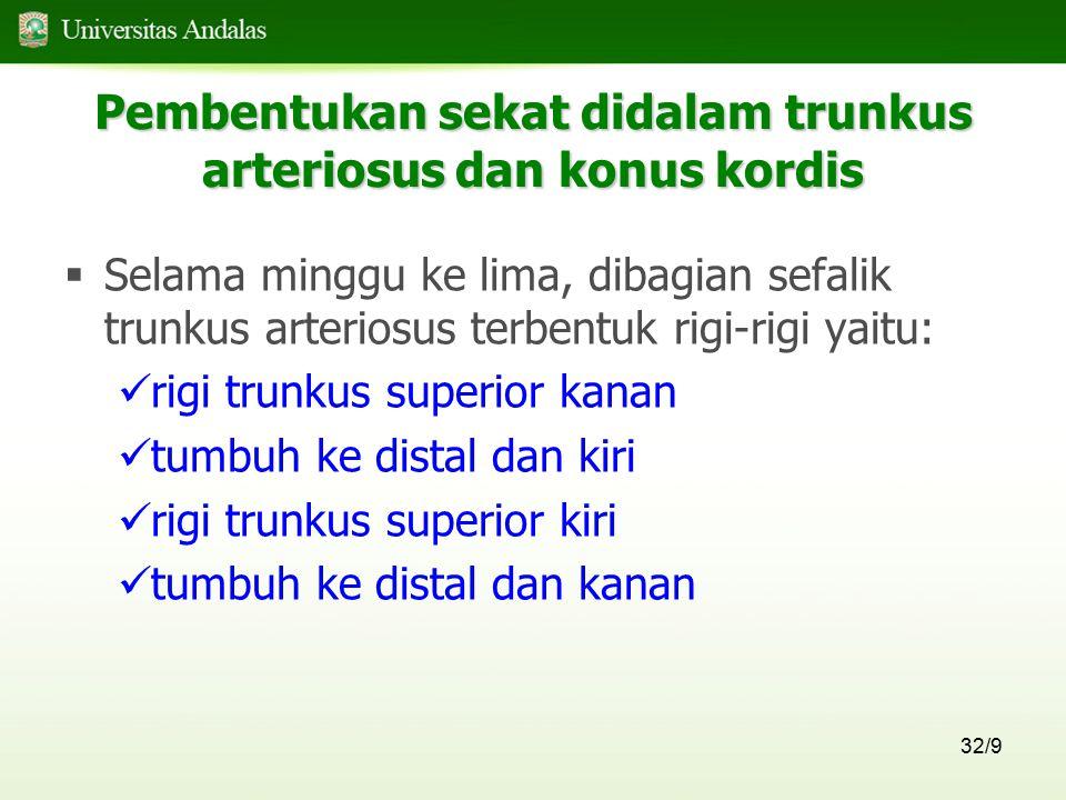 Pembentukan sekat didalam trunkus arteriosus dan konus kordis