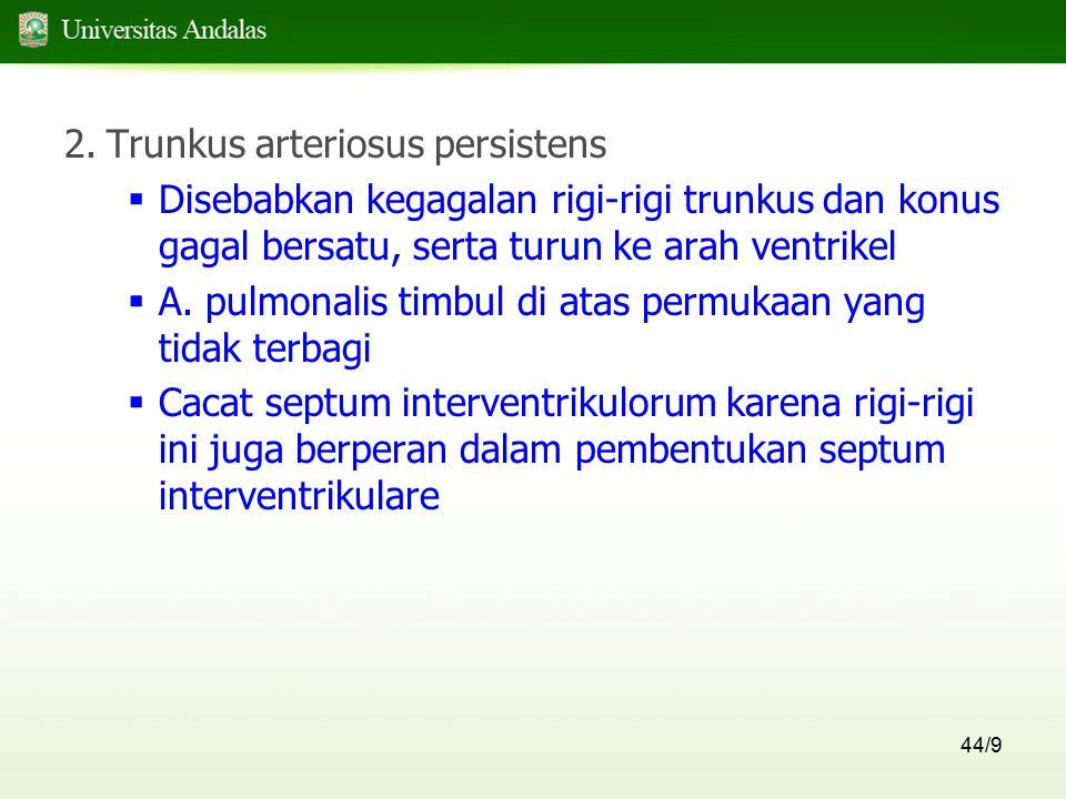 Trunkus arteriosus persistens