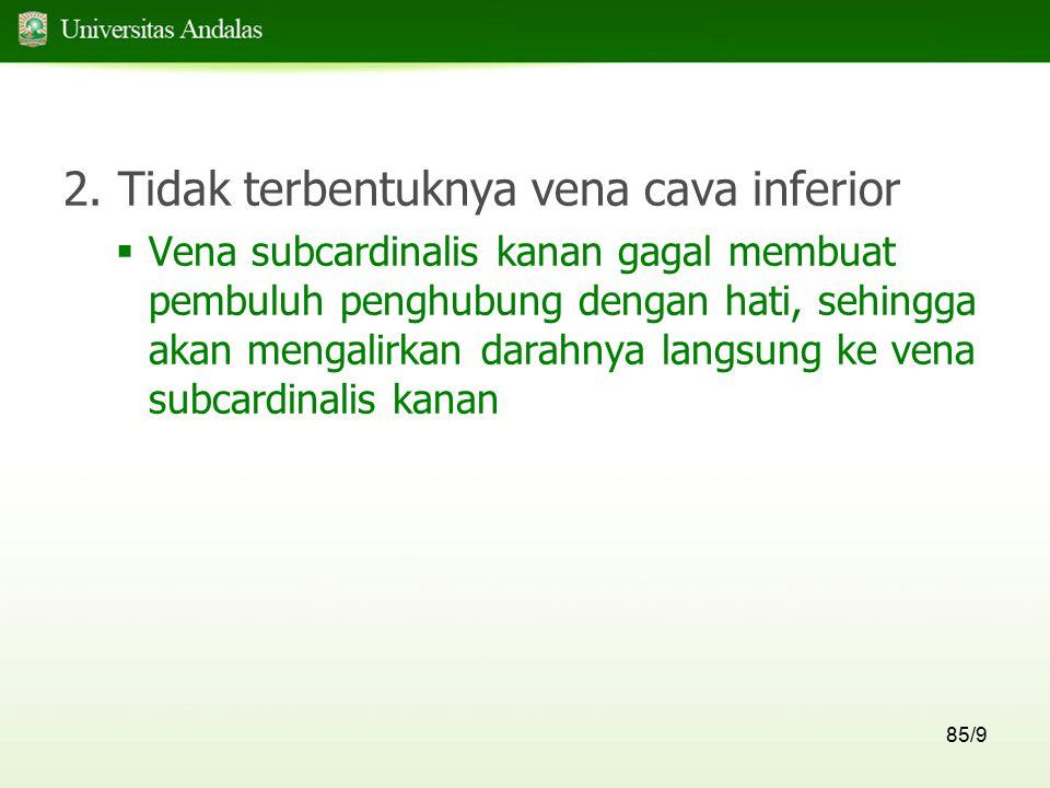 2. Tidak terbentuknya vena cava inferior