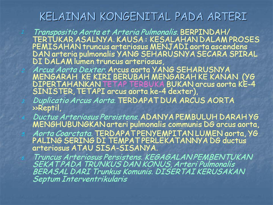 KELAINAN KONGENITAL PADA ARTERI