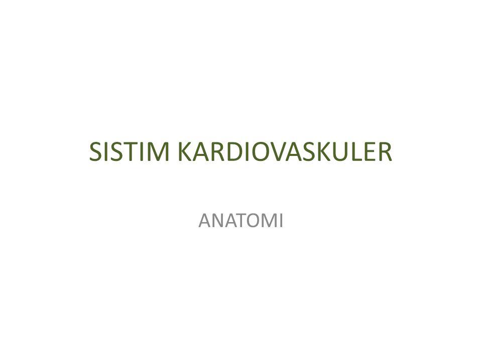 SISTIM KARDIOVASKULER