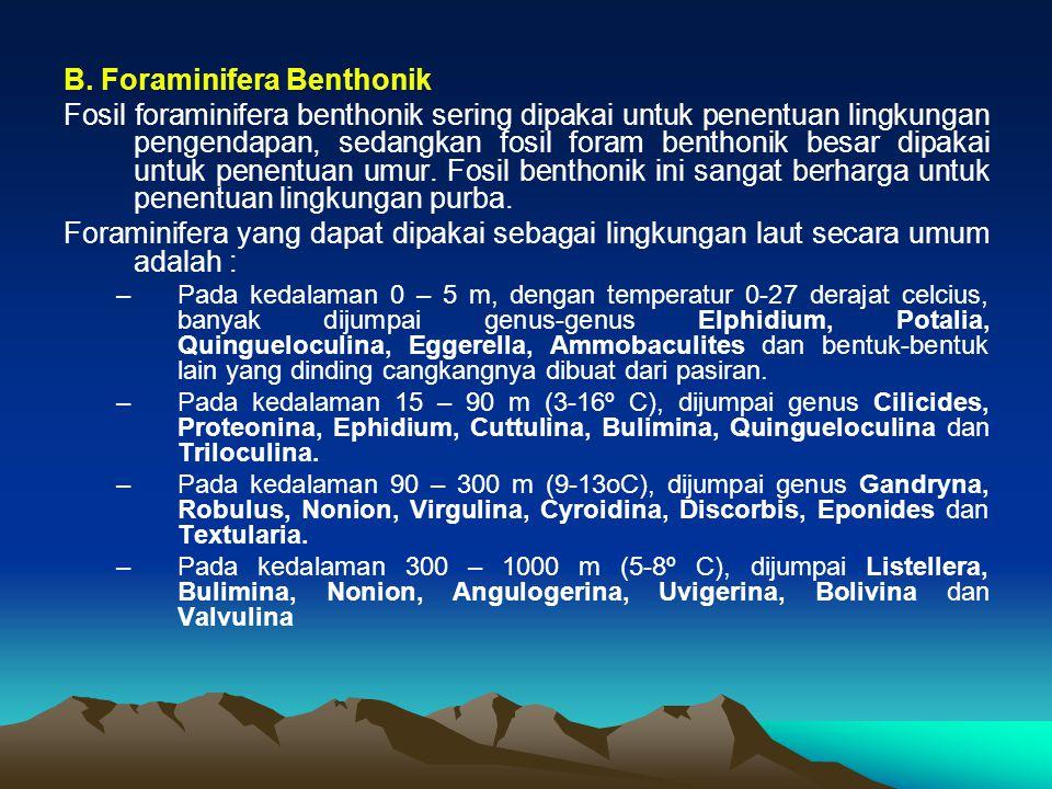 B. Foraminifera Benthonik