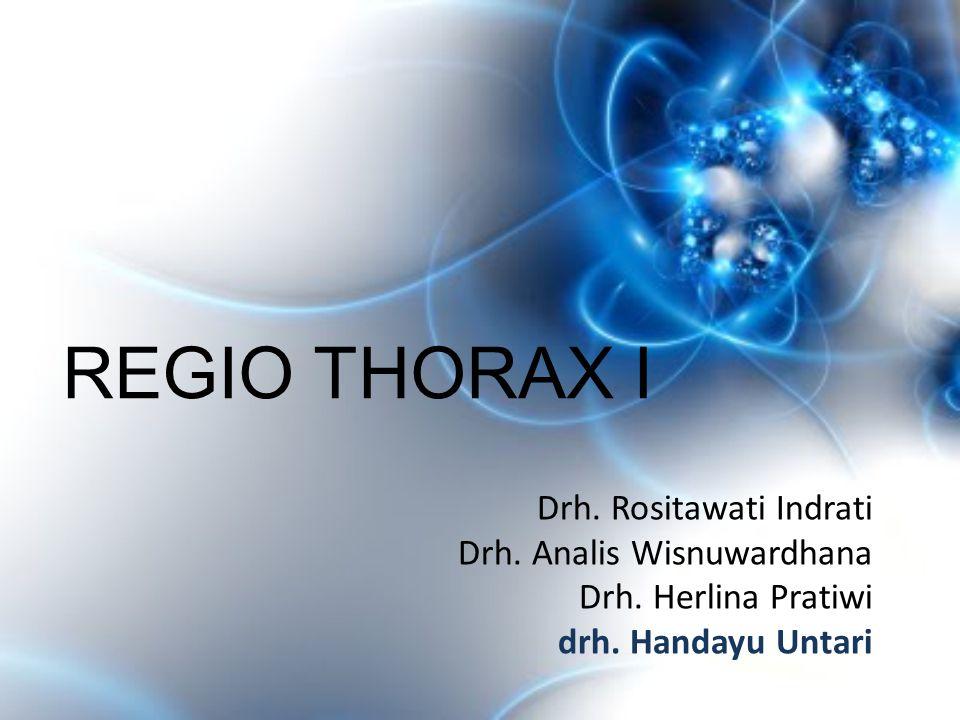 REGIO THORAX I Drh. Rositawati Indrati Drh. Analis Wisnuwardhana